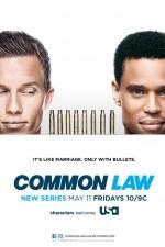 Common Law: Season 1