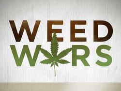 Weed Wars: Season 1