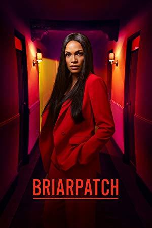 Briarpatch: Season 1