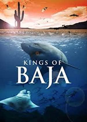 Kings Of Baja