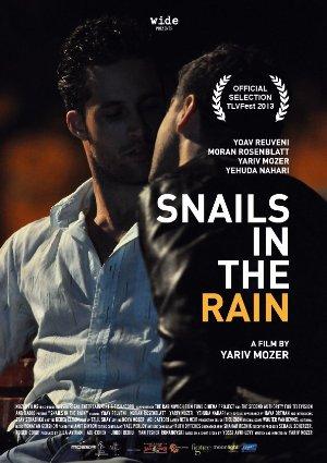 Snails In The Rain