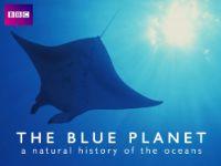 The Blue Planet: Season 1